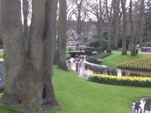 Garden. Trees riber flowers bridge Royalty Free Stock Photography
