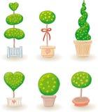 Garden Trees - set 2 Royalty Free Stock Photography