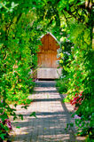 Garden trellis walkway hideout hidden tranquil sitting bench area outdoors empty shaded by vine and roses Stock Photo
