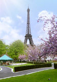 The garden of the Trocadero with the Eiffel Tower in Paris in Fr Stock Image