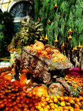 Garden troll. Floral display at the Bellagio conservatory in las vegas.  Spider mums, pumpkins, weeping willow, fall leaves being used. Nobody color Stock Photography