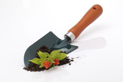 Garden Trowel Royalty Free Stock Images