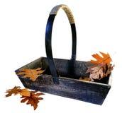 Garden Trug with Autumn Leaves Royalty Free Stock Photos