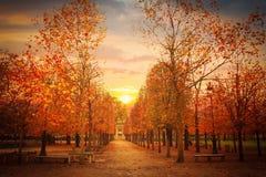 Garden of Tuileries Stock Images