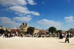 Garden of Tuileries and the Louvre in Paris Royalty Free Stock Photo