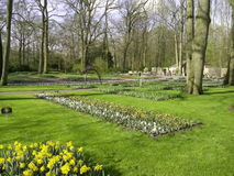 Garden. Tulip garden park kokhenhof way Stock Photos