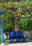 Garden in Tunisia. Photo taken in the village of Sidi Bou Saïd, Tunisia Royalty Free Stock Image