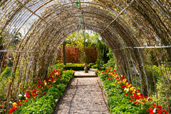 Garden tunnels Royalty Free Stock Photography
