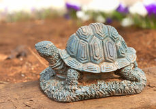Garden Turtle Royalty Free Stock Photos