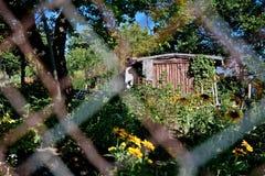 Garden in urban areas Royalty Free Stock Image