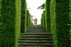 Garden Urn. Urn at the top of a row of stepps & hedges with focus on the Urn Stock Image