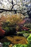 Garden in Vancouver,Canada Royalty Free Stock Photos