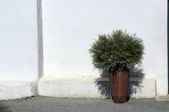 Garden vase on the facade of church Royalty Free Stock Photos