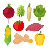 Garden vegetable set. Vegetarian nutrition. Cartoon flat style. Vector Stock Photo