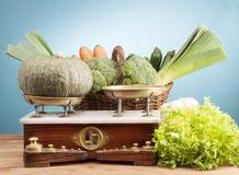 Garden vegetable. Some vegetable from the garden Stock Image