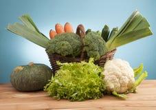 Garden vegetable. Some vegetable from the garden Stock Photos