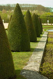 Garden of Versailles Royalty Free Stock Photo