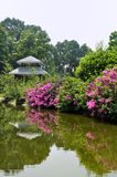 Garden view with lake and flower. A garden view, with green plant, rhododendra, small lake and a gloriette Stock Images