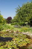 Garden view over a  small pond Royalty Free Stock Images