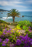Garden and view of the Pacific Ocean at Heisler Park  Royalty Free Stock Photography