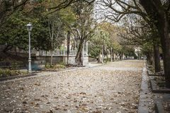 Garden view promenade, autumn day in park,parque alameda.Santiag. O de Compostela,Spain Royalty Free Stock Photography