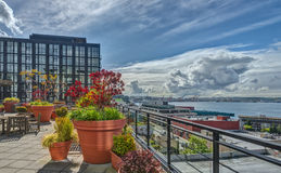 Rooftop Garden with a View of Puget Sound in Seattle, Stock Photos