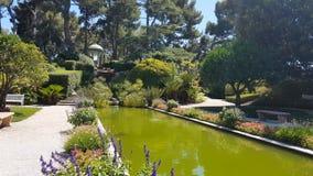Garden in Villa Ephrussi de Rothschild. Saint-Jean-Cap-Ferrat stock video