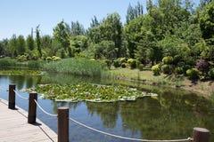Garden. Villadom, community, afforest, clean and high grade community. life style, garden, senery Royalty Free Stock Photo