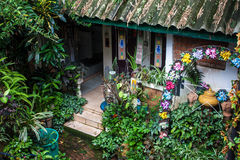 Garden of a village house Royalty Free Stock Image