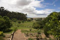 A garden in a vineyard Stock Photo