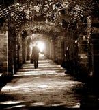 Garden walking path. A business man walking on the garden path Royalty Free Stock Photo