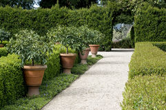 Garden walkway Royalty Free Stock Images