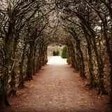 Garden walkway. A walkway shaped by fall trees into an enchanting garden stock photos