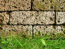 Garden wall Stock Images