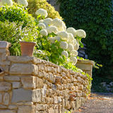Garden wall in Provence, France Royalty Free Stock Image
