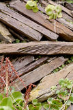 Garden wall slate stacked diagonally Stock Images