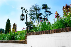 Garden with wall Royalty Free Stock Photo