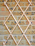 Garden wall trellis Stock Photo