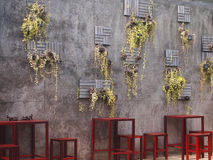 Garden wall with wide. Stock Photo