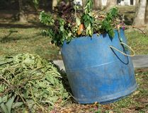 Garden Waste for Compost Royalty Free Stock Photography