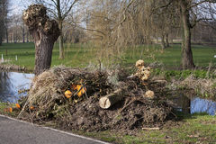 Garden waste Royalty Free Stock Images
