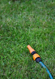 The garden water hose laying on the green grass. The garden water hose laying on the bright green grass royalty free stock photos
