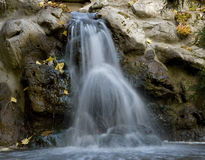 Garden Waterfall. A few leaves and motion blur Stock Images