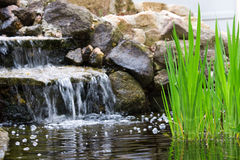 Garden waterfall Royalty Free Stock Photos