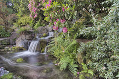 Garden Waterfall in Spring Stock Images