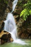 Garden waterfalls stock photos