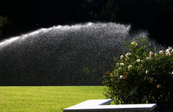 Garden watering royalty free stock images