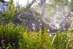 garden watering Στοκ Φωτογραφίες