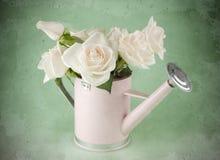 Garden watering can Royalty Free Stock Photos