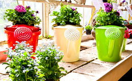 Garden - Watering can Stock Images